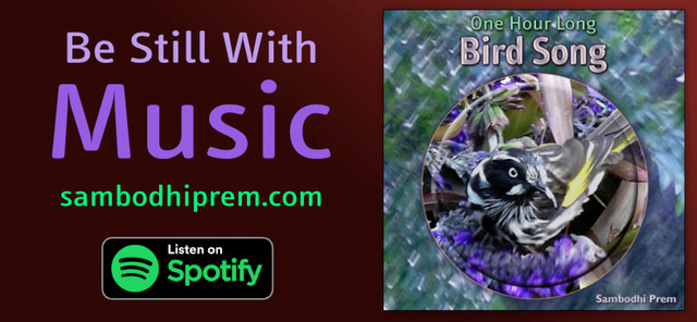 One Hour Long Bird Song by Sambodhi Prem