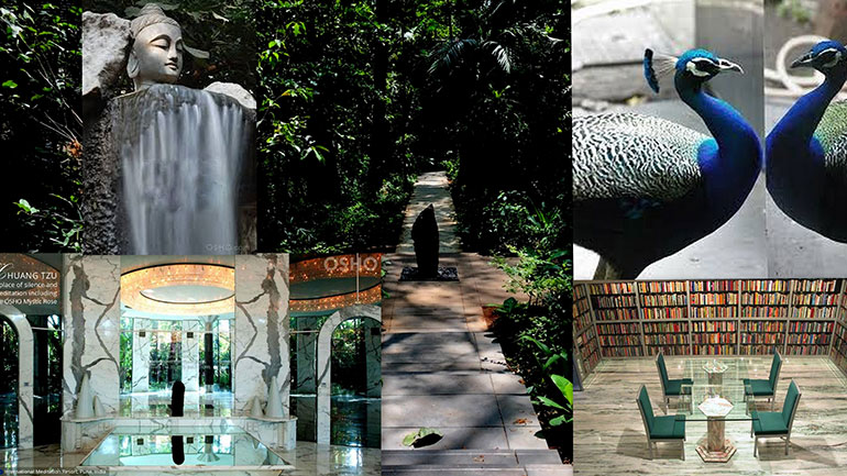 Collage by Tarpan with shots from the Osho Meditation Resort