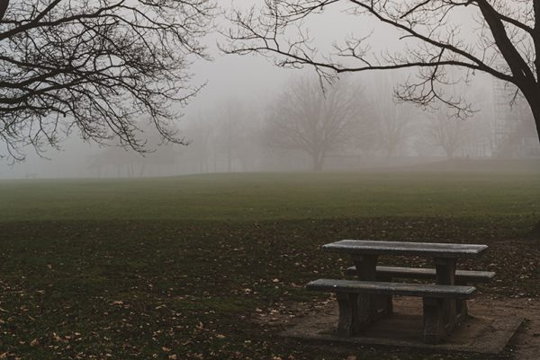 Bench in the park by Andreas Brun