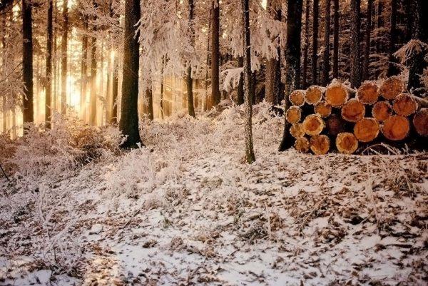070-Darpan-winter-(20)