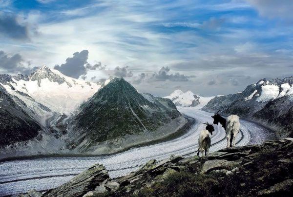 100-Darpan-winter-(16)