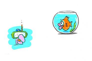 Aquarius and Pisces