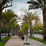Tel Aviv in Time of Corona by Prabhat (Nimi Getter)