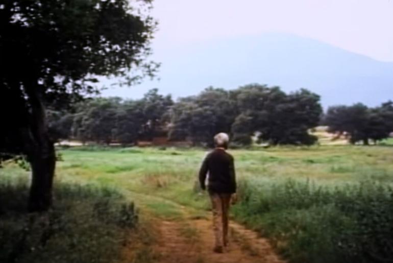 Krishnamurti walking