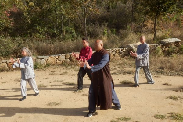Shifu teaching kungfu