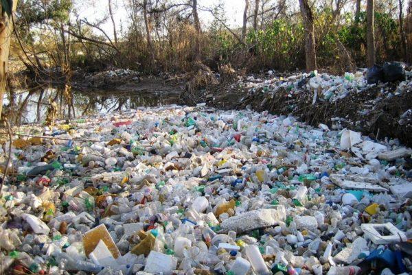 Trash in Tijuana river