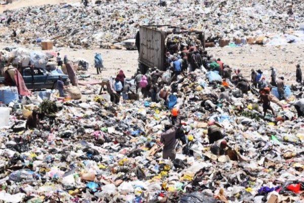 Trash picking Tijuana