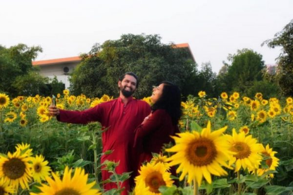 Dancing amidst the sunflowers