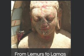 From Lemurs to Lamas book cover