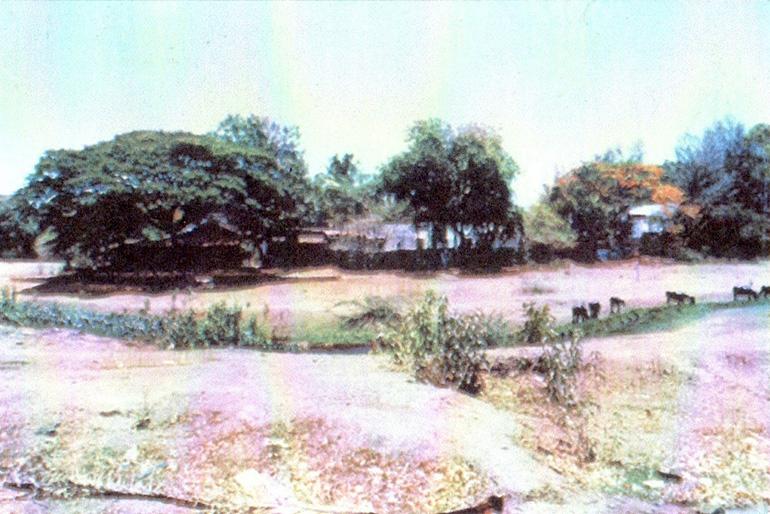 Nalla Park