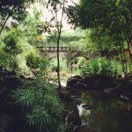 Osho Teerth Park